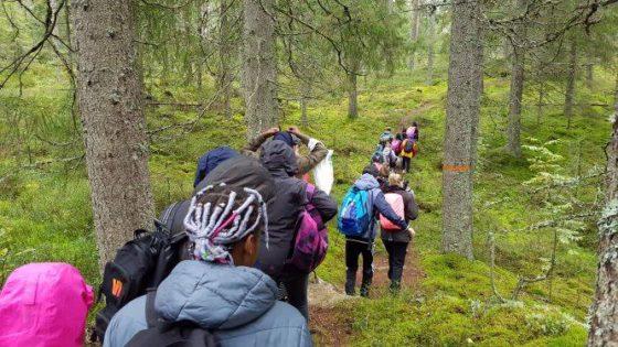 Vandrare i skogen i Kindla