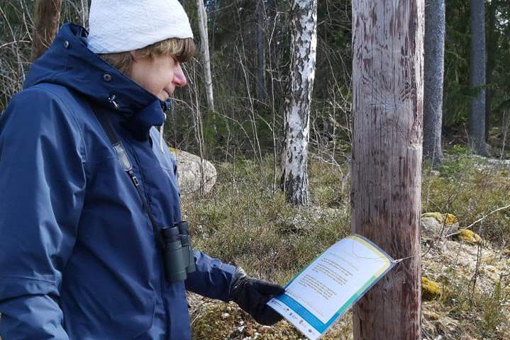 Kvinna läser en skylt som sitter på ett träd
